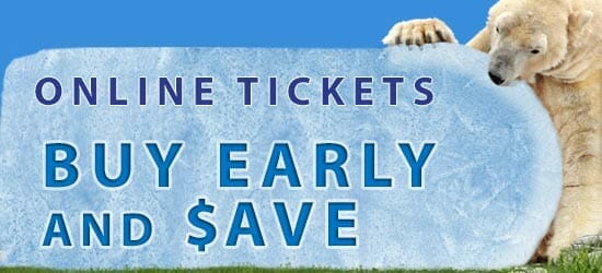 A polar bear holding a 'Buy Early and Save' sign made of ice